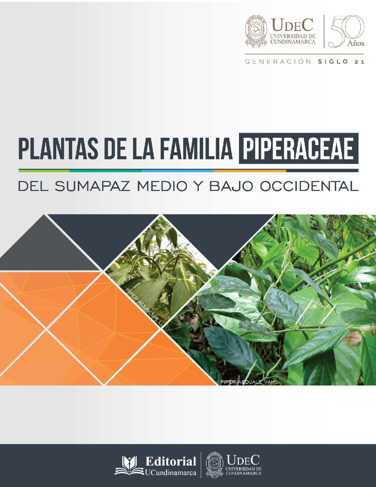 Plantas De La Familia Piperaceae Del Sumapaz Medio Y Bajo Occidental