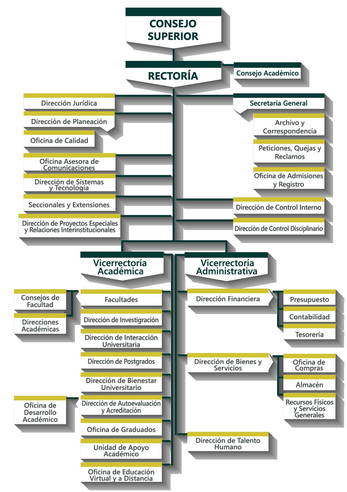 Estructura Orgánica Y Directivos